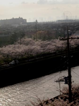 2010_0410_163813-IMG_9736.JPG